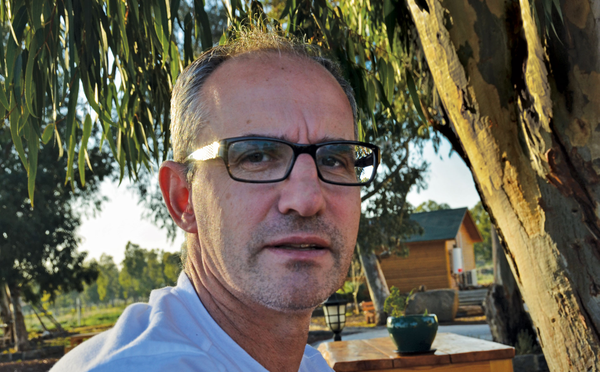 Shaun Rootenberg, romance scammer