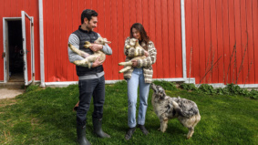 This Toronto couple quit their New York finance jobs and moved back home to start a pasture-raised meat subscription service. Here's what happened