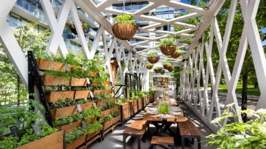 A first look inside 1 Hotel, the Thompson's verdant replacement