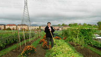 """""""I plowed the field myself while my dog trotted alongside"""": How this Toronto woman turned a hydro field into a thriving community farm"""